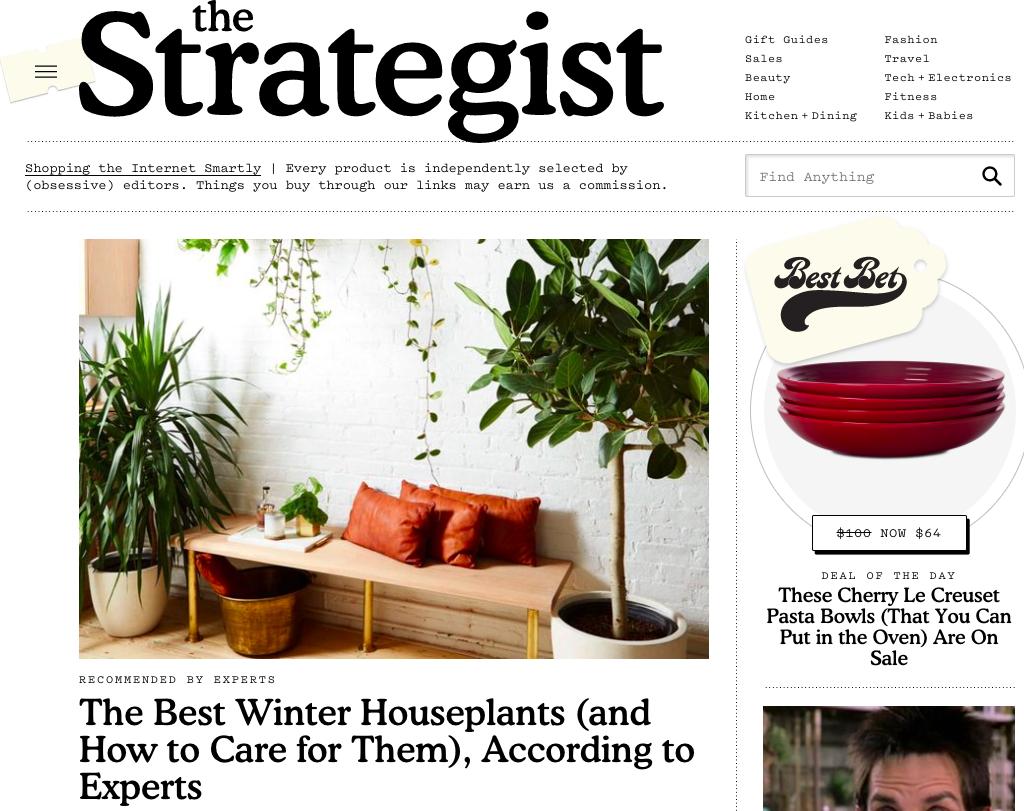 """The Strategist est un site de contenu """"full commerce"""" avec une ligne édito forte et unique"""